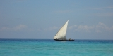 barca_avela_africa