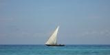 sfondo_barca_a_vela