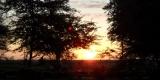 tsavo-tramonto