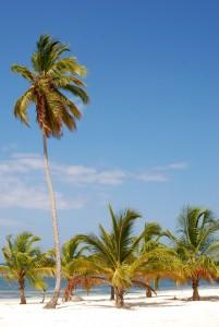 Voli Caraibi