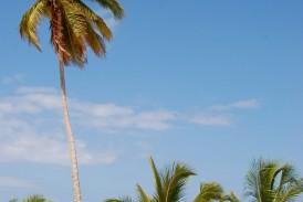 Voli per Bahamas volo Neos da Milano Malpensa
