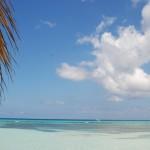 voli Cuba Cubacom.net