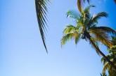 Voli per Punta Cana